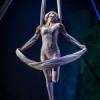 Cirque-tacular's Shimmer