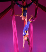 Cirque-tacular: High Energy Dazzling Circus Feats